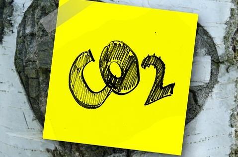 Colt alcanzará cero emisiones globales en 2030.
