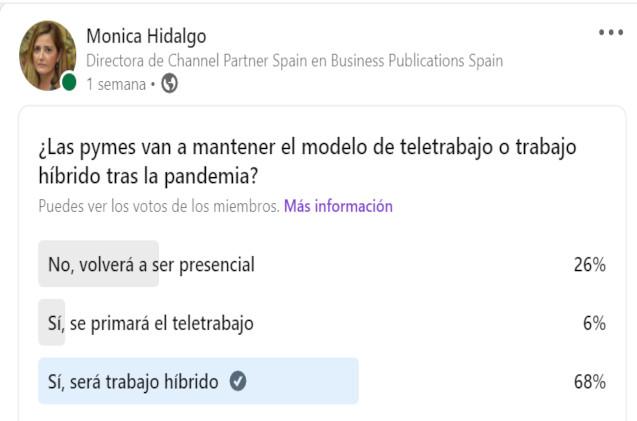 Encuesta teletrabajo Channel Partner