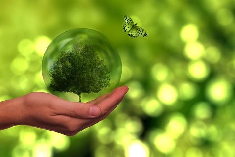 Oracle sostenibilidad