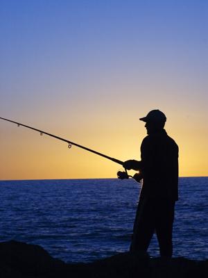 Satlink y DOS añaden Inteligencia Artificial para optimizar la actividad pesquera