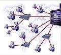 El futuro pasa por la consolidación de las redes