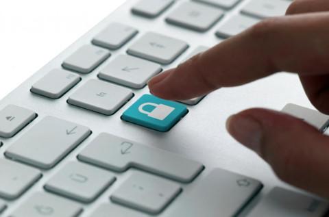 Solo el 31 % de las empresas usan soluciones de prevención de pérdida de datos