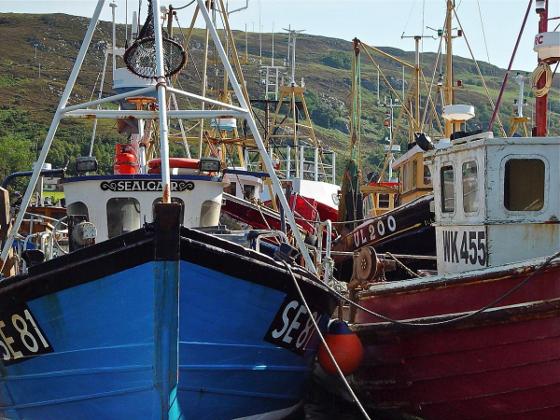 Sólo el 1% de los 10.000 pesqueros que hay en España disfrutan de tecnología VSAT