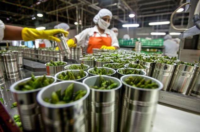 industria agro