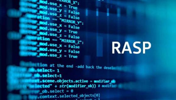 Hdiv Security ha sido la única empresas española de RASP nombrada por Gartner.