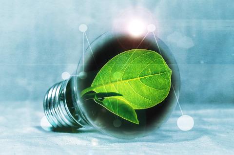 El cuidado del medio ambiente se lleva gran parte de las partidas de RSC.
