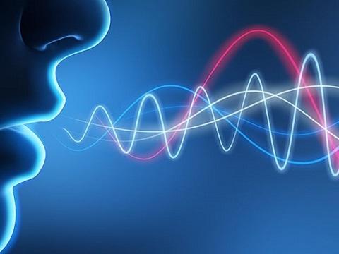 Las comunicaciones recuperan la voz