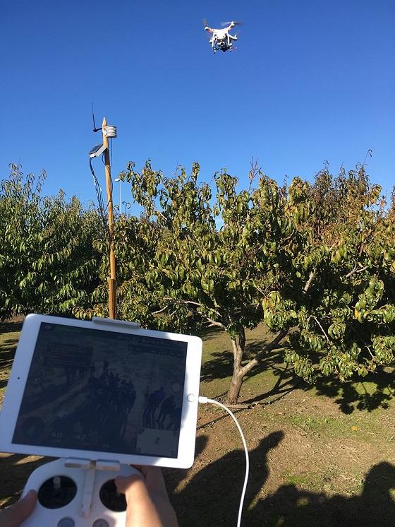 El proyecto de Smart AG Services en Andalucía recurre al uso de drones.