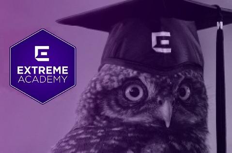 Extreme Academy, nueva formación de profesionales de TIC.