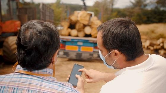 El proyecto Chainwood ha desarrollado una infraestructura de software y una aplicación web y móvil.
