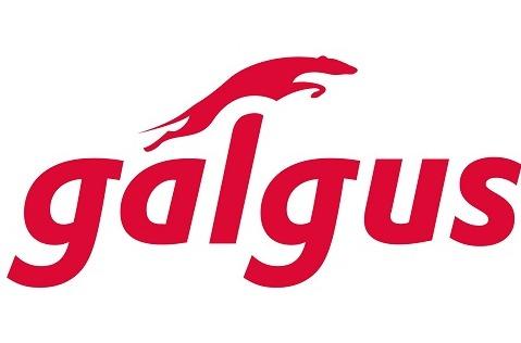Galgus, nuevo miembro de la WiFi Alliance.