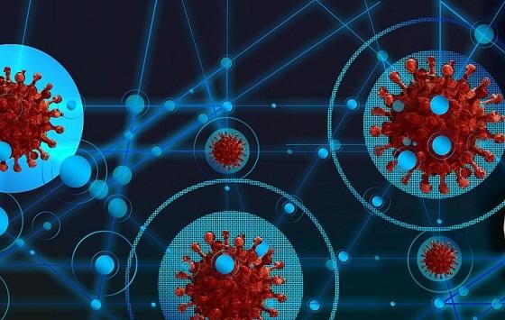 Internet: una red apta para pandemias